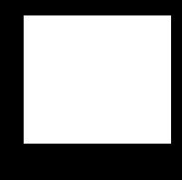 MODĀM SECTION